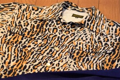 207_leopard11